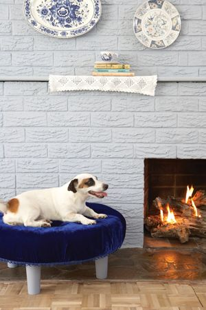 Build a bed for your dog - Make Fido feel like a prince with this elegant dog bed.