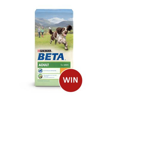Win a 14kg bag of BETA Adult Chicken Dog Food, ENTER:http://virl.io/QXprQpSY