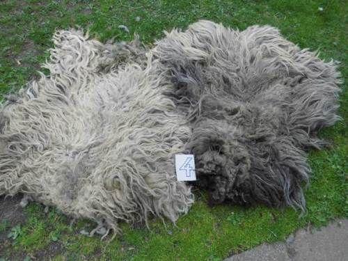 Wool picker see more building a wool picker spidersworkshop wordpress