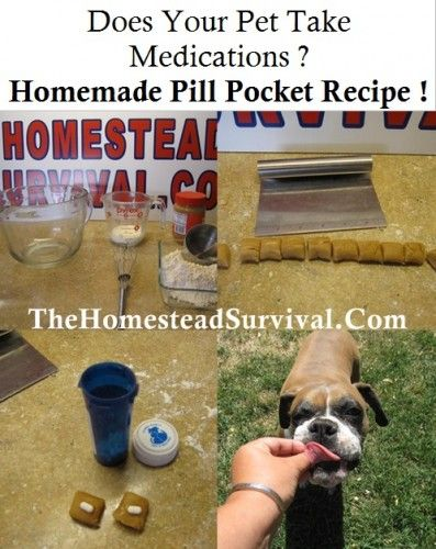 429 Best Images About Pet Covers And Ideas On Pinterest