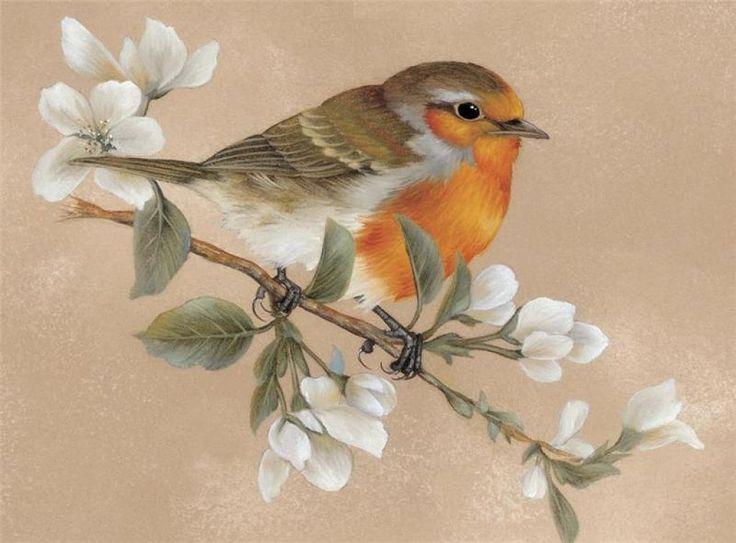 китайская живопись цветы и птицы - Поиск в Google