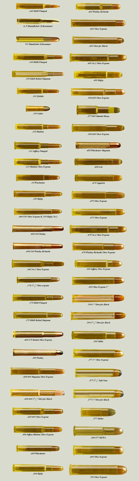 Comprehensive Ammunition Chart  last part of board has more prep info  http://www.pinterest.com/ms5739/tipsprintscharts/