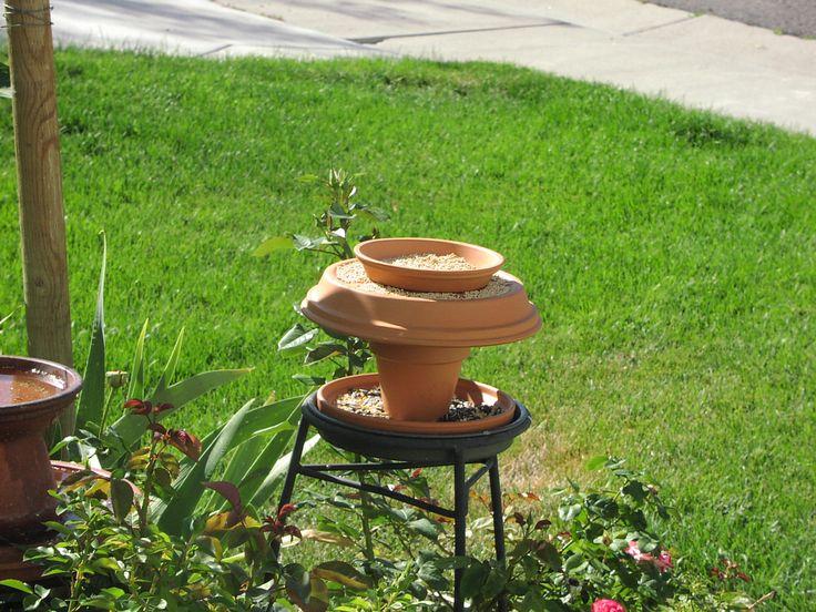 bird feeders homemade | Bird Feeder in my front yard 2005 - 2006
