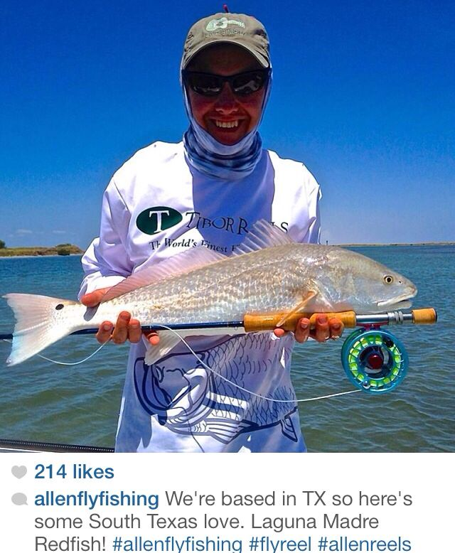 4459 best everything fishing images on pinterest shark for Best saltwater fishing times