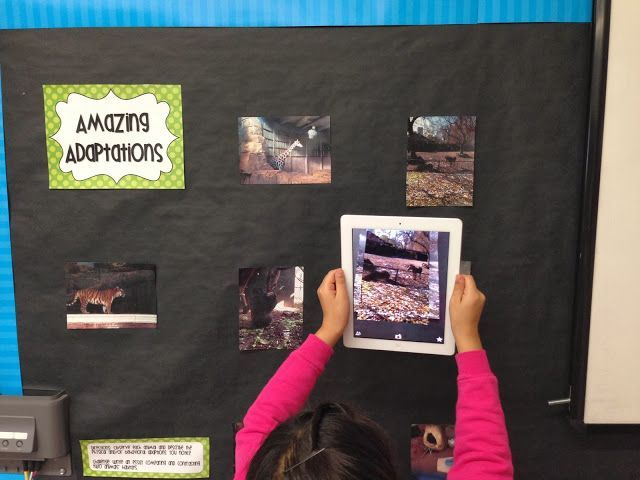 Animal Adaptations Science Center Using Augmented Reality - iTeach 1:1