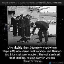 Image result for unsinkable sam
