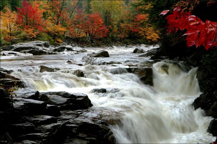 Leaves begin to change color along the Swift River in the White Mountain National Forest in Albany, N.H., Wednesday, Oct. 1.  AP / Jim Cole  Read more here: http://blogs.sacbee.com/photos/2008/10/fall-colors-around-the-world.html#storylink=cpy