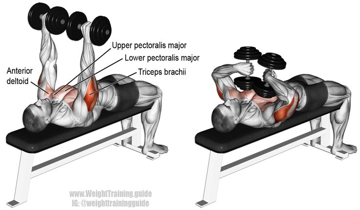 Tate press. A compound push exercise. Main muscles worked: Triceps Brachii, Pectoralis Major, and Anterior Deltoid. Made popular by powerlifter Dave Tate. Very popular exercise with powerlifters. Visit site to learn why.