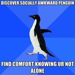 Socially Awkward Penguin - Discover Socially Awkward Penguin Find comfort knowing ur not alone