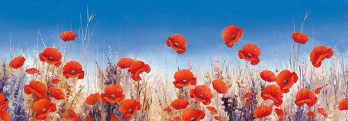 Poppy Landscape - Hilary Mayes - IG 4703