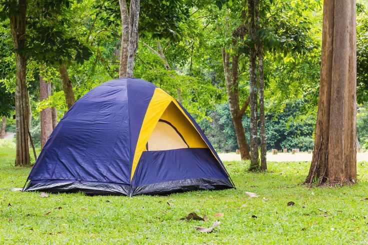 Get some hot camping tips that won't leave your wallet burning a campfire a cash through it. It's worth considering as a low cost holiday!