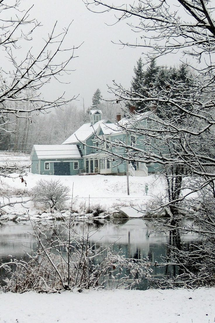 Winter Beautyby (Nikki Graham)