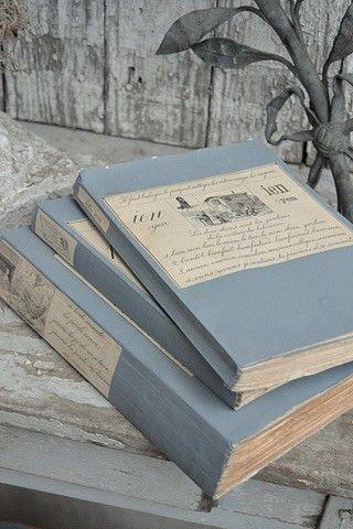 blue & grey ~ books