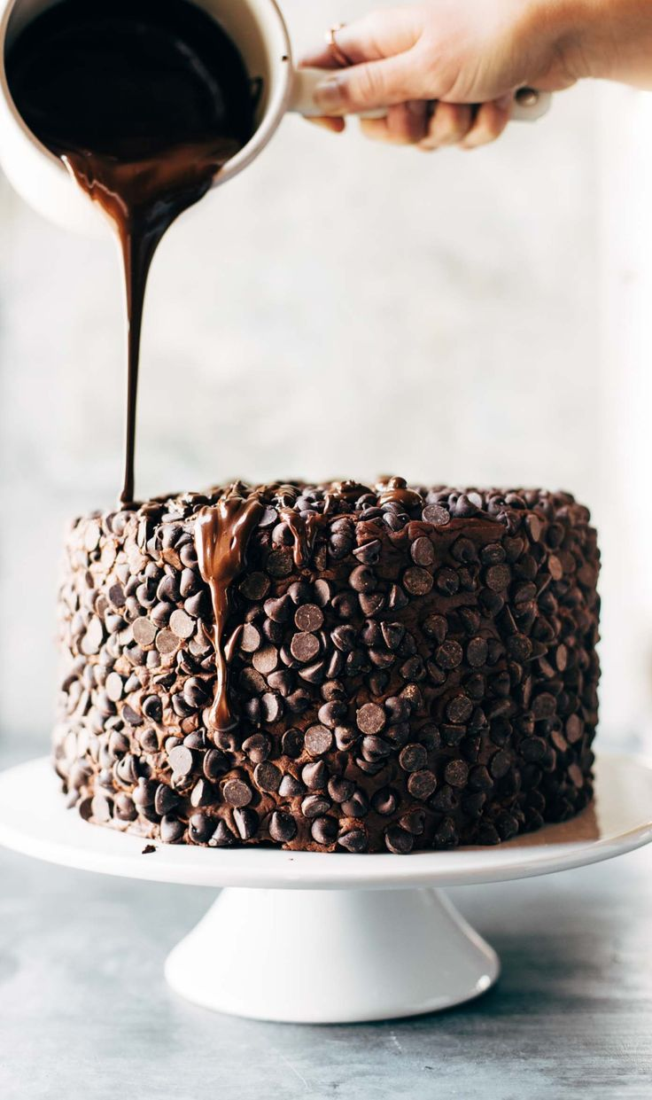 Blackout Chocolate Cake   the best chocolate cake with a chocolate chip exterior @pinchofyum