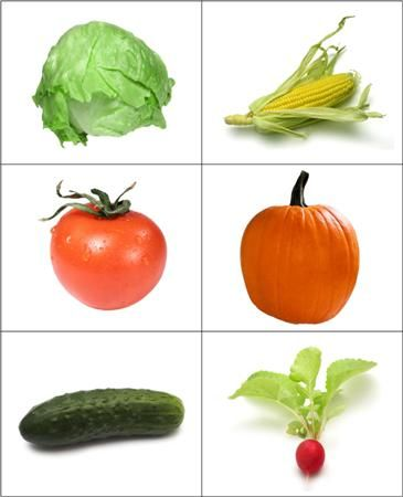 Fruit & Vegetable Matching Cards from Montessori for Everyone