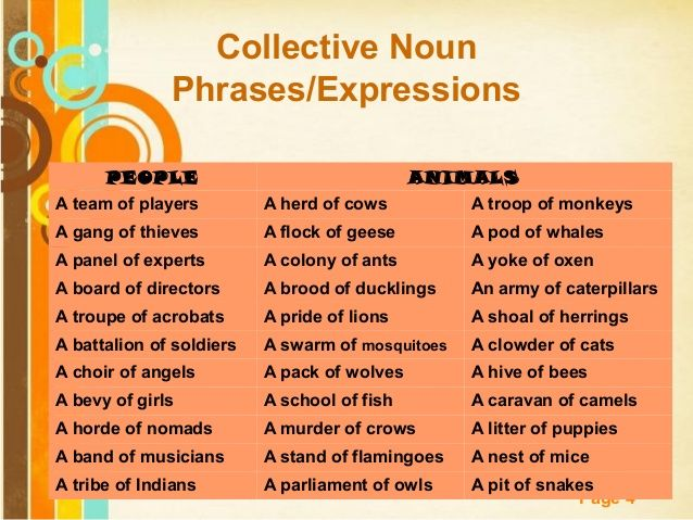 Forum   Learn English   Collective Nouns for People