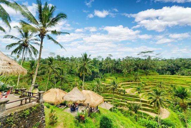 Экскурсии на Бали от MyBaliTrips.com