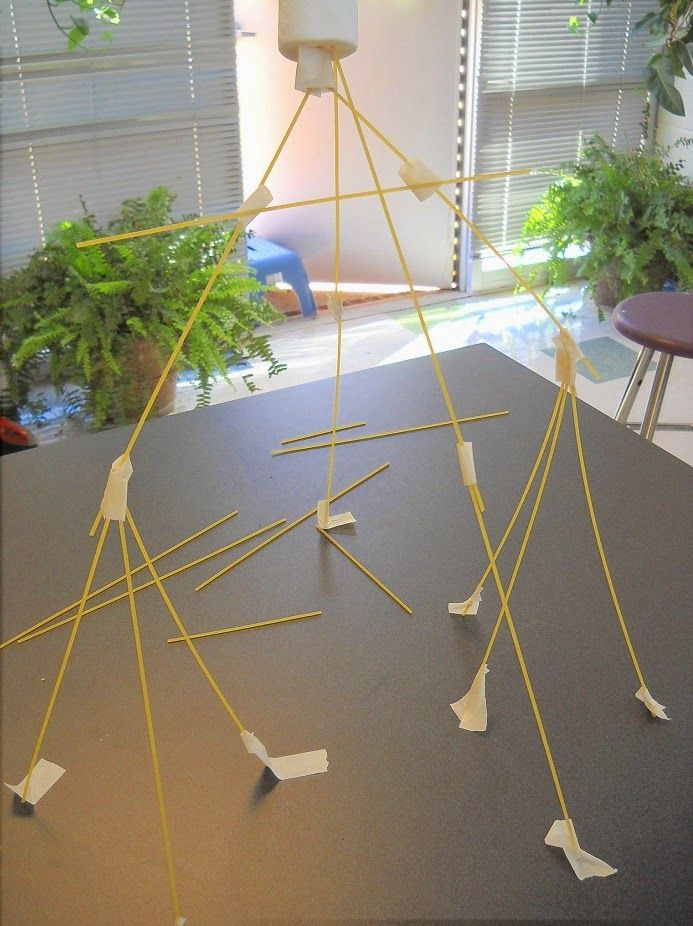 STEM Challenge: Can you build a tower out of spaghetti? Kids will try building the tallest structure possible and make it very narrow- only to discover that when weight is added to the top the structure and their thinking must be revised! Great team building activity!