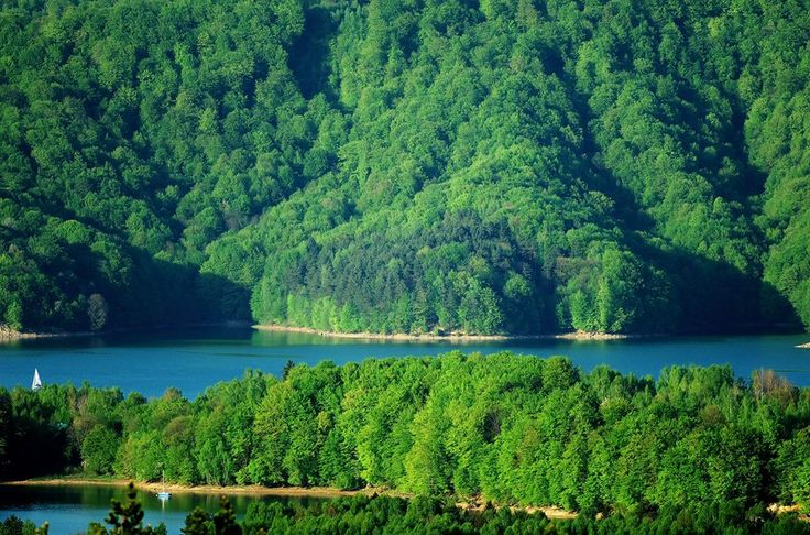 Czy jezioro Solińskie też Wam przypomina Park Jurajski? #Podkarpacie #Solina #jezioro #natura/ #Poland #nature #lake