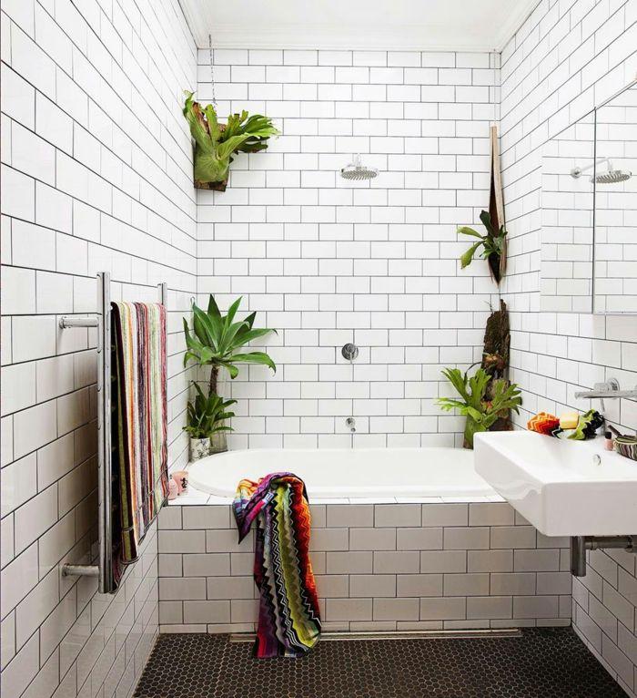 1001 Idees Pour Votre Plante Pour Salle De Bain Ambiances Spa Et Zen Windowless Bathroom Best Bathroom Plants Bathroom Plants