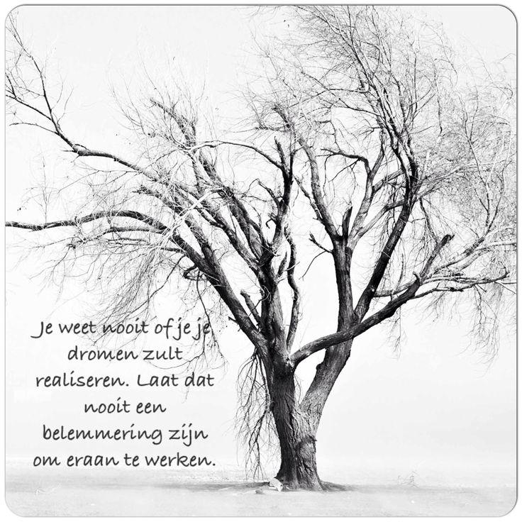 Je weet nooit of jij je #dromen zult realiseren. Laat dat nooit een belemmering zijn om eraan te werken
