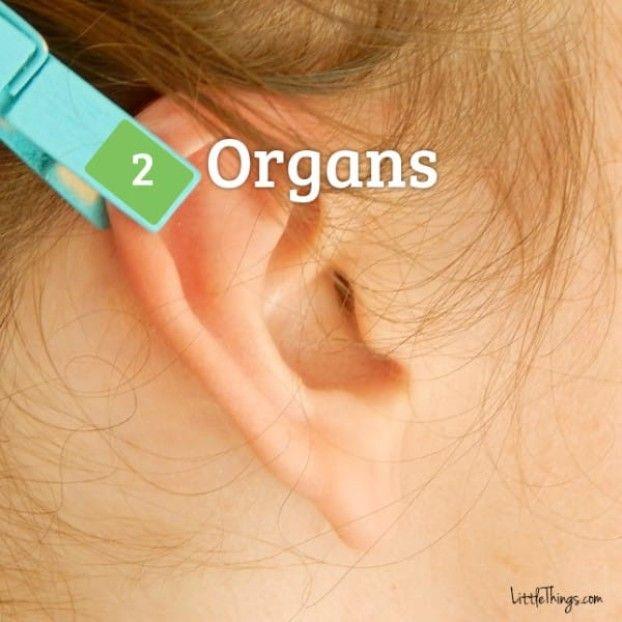 Sie steckt sich eine Wäscheklammer ans Ohr. Wenn du siehst warum, wirst auch du es machen wollen.   LikeMag   We like to entertain you