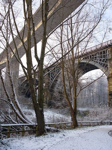 Winter, Ouseburn Valley, Newcastle upon Tyne