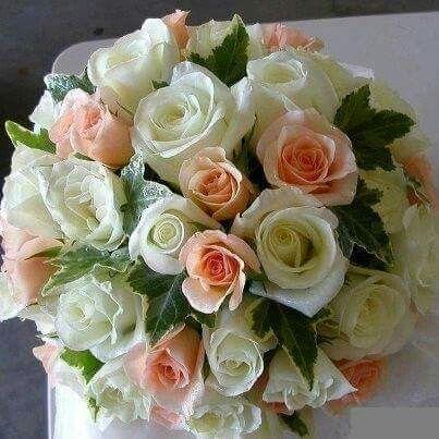 Delicadas Rosas brancas com champanhe!!
