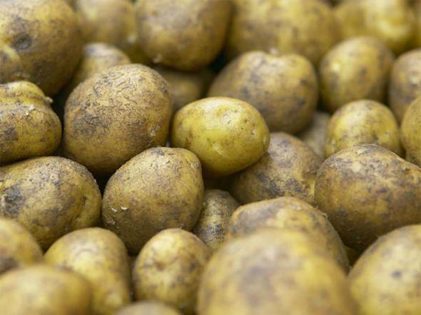 Hausgemachte Pommes aus frischen Kartoffeln schmecken einfach unglaublich gut. Wir zeigen Schritt für Schritt, wie Sie die knusprigen Pommes selber machen.