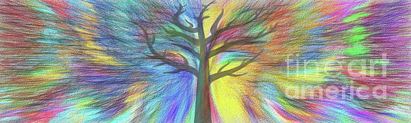 #Rainbow #Tree by #Kaye_Menner #Photography Quality Prints Cards Products at: http://kaye-menner.pixels.com/featured/rainbow-tree-by-kaye-menner-kaye-menner.html
