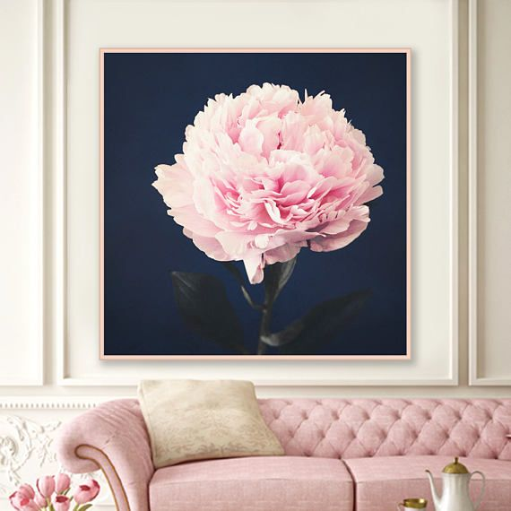 Large Peony Wall Art Fine Art Photography Peony Photograph Etsy Blue And Pink Living Room Pink Living Room Pink Decor