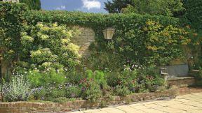 Navrh zahradní zdi i se seznamem rostlin