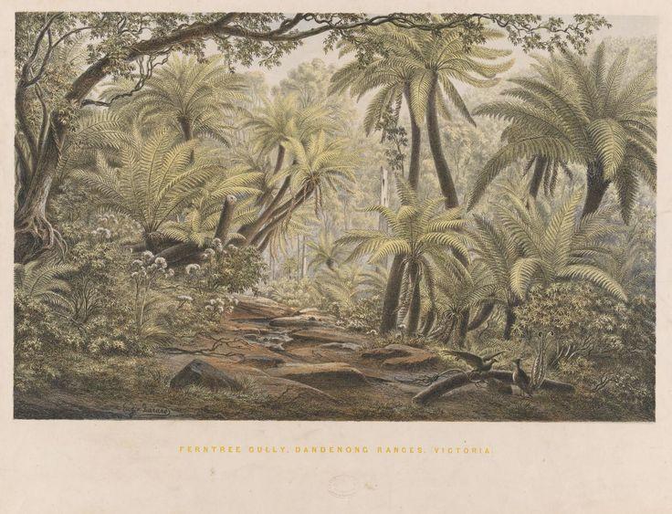"""Eugene von GUERARD """"Ferntree Gully, Dandenong Ranges, Victoria"""" 1867"""