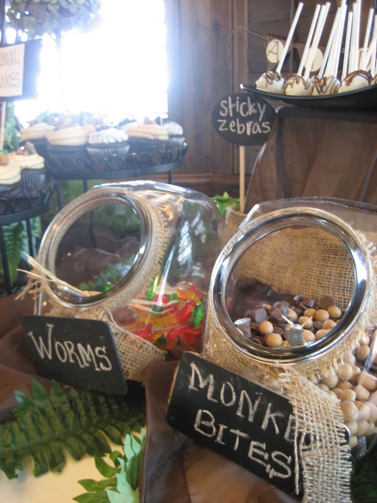 safari candy and sweets bar.  Cute