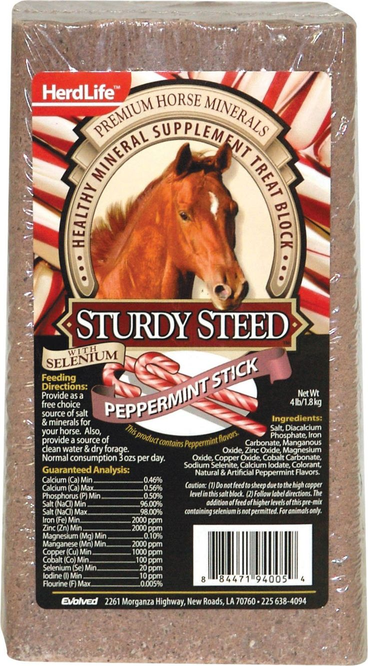 Evolved Sturdy Steed Horse Salt Block Peppermint 4 Pound With Images Salt Block