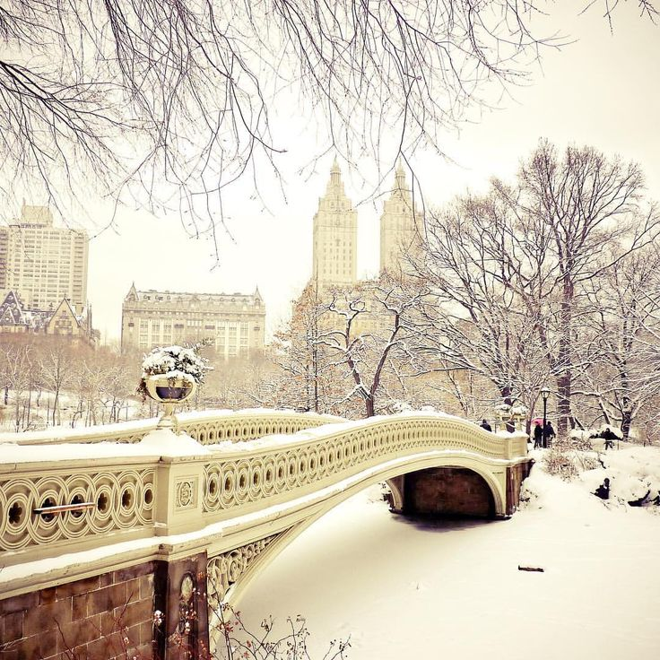 """nythroughthelens: """"Happy New Year to one and all. Central Park, New York City… (at New York, New York) """""""