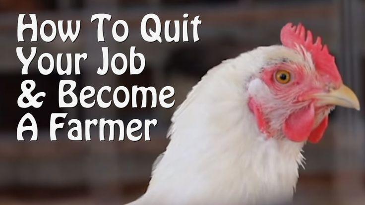 QuitYourJob&BecomeFarmer (youtube.c/watch?v=wxT9bqe7nbQ)=(youtube.c/user/LCLREPORT)= 1-6S*(youtube.c/watch?v=wxT9bqe7nbQ&list=PL-7z2V3Z46NWC5M4_9LICzPBIL-jmOlUp)(pinterest.c/ainemacdermot/farm-of-the-future)