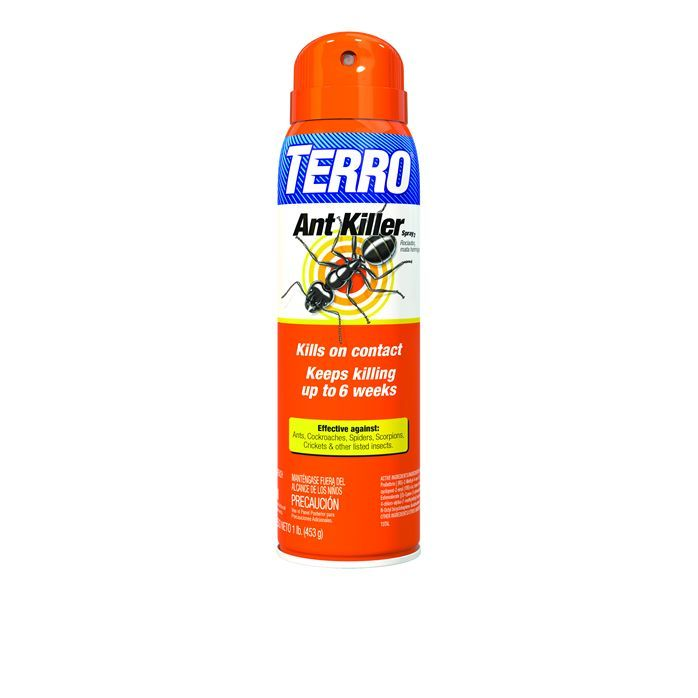 TERRO® Ant Killer Spray kills ants, spiders, cockroaches, crickets, Asian lady beetles & other insects on contact and continues to kill up to 6 weeks. Shop now!