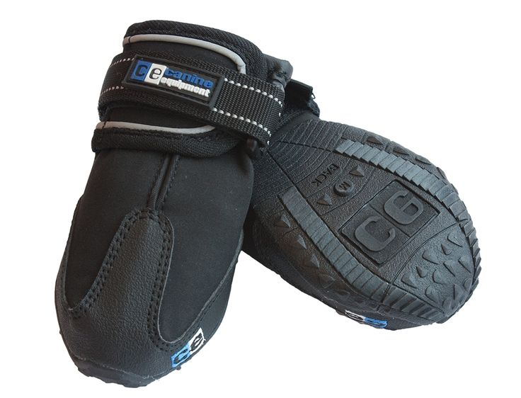 Canine Equipment trail boots  Great for rocky trails or those darn barnacle at the beach. Comes in sizes: x-small, small, medium, large, x-large.