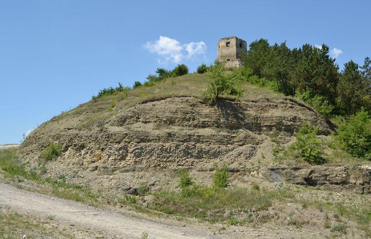 Руины замка (Достопримечательность с. Пищатинцы, Борщёвский район, Тернопольская область) фото на карте Украины, как добраться