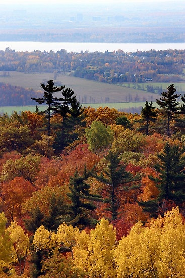 Fall in the Gatineaus, Ottawa, by Debbie Pinard