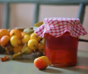 Crabapple recipes!  Juice, jelly, butter, bread, liqueur recipes from STACKED STONE FARM
