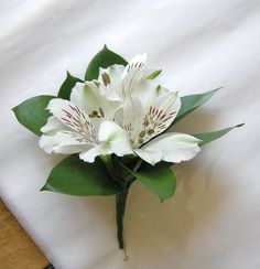 White alstroemeria corsage with ruscus leaves.  Purvian Lilies are available in pinks, lavender, purple, yellow, peach, white and deep purple (as well as variegated colors).  They are a long lasting flowers that is great for bouquets, centerpieces, corsages and boutonnieres.