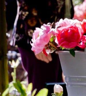 Arezzo | Vinci 10 biglietti per Arezzo Flower Show