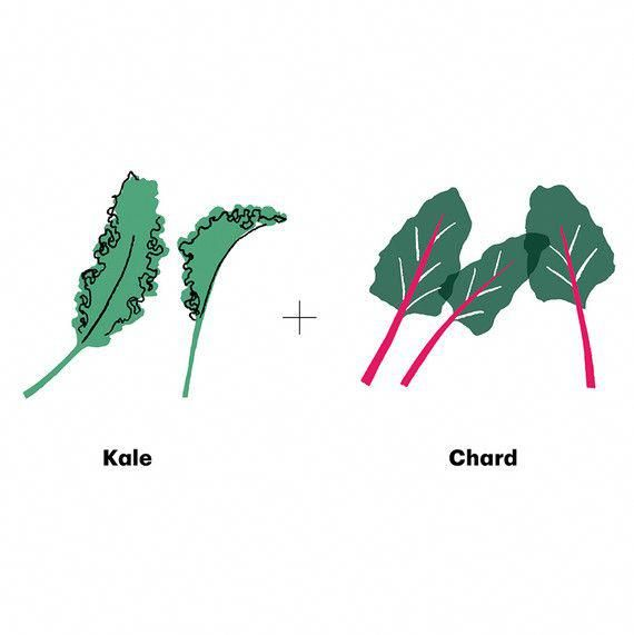 Although They Come From Different Families Kale Is A Brassica Chard Is In The Spinach Family These Leaf Garden Companion Planting Companion Planting Plants