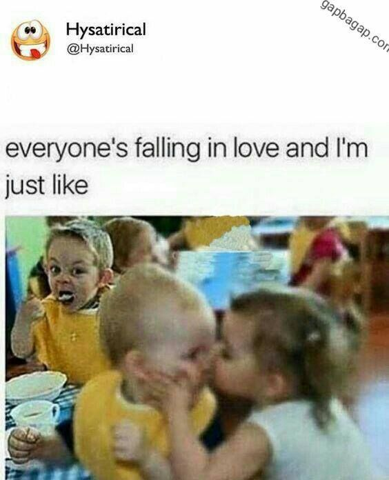 Funny Meme About Falling in Love vs. Me