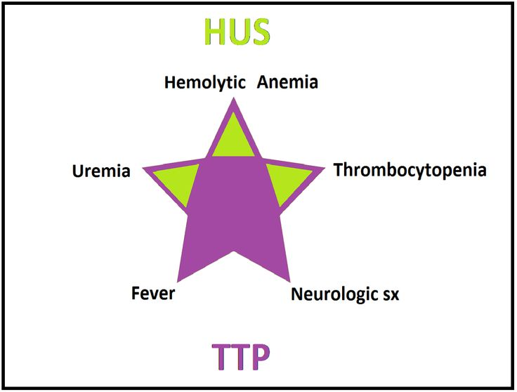 Hemolytic Uremic Syndrome (HUS):  clinical TRIAD (in green)• Associated with E. coli O157:H7 toxin (food poisoning), • MC in children. • Don't give AB, it releases more toxins!!!!!! Thrombotic Thrombocytopenic Purpura (TTP): clinical PENTAD (in...