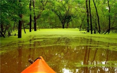 fondos de pantalla paisajes naturales para dedicar