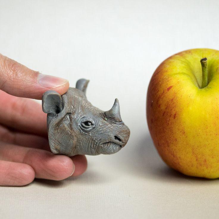 25+ best ideas about Javan rhinoceros on Pinterest | Rhinos, Save ...