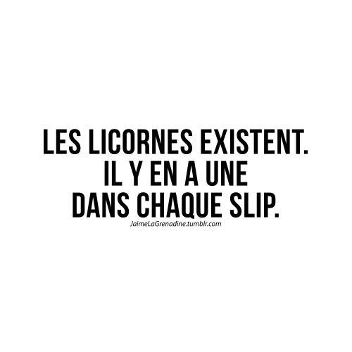 Les licornes existent. Il y en a une dans chaque slip - #JaimeLaGrenadine #citation #punchline #unicorn #licorne